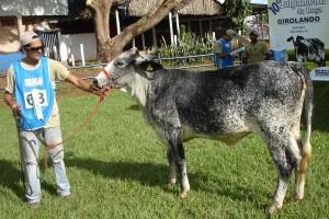 Perla Morty 5/8 - 2012